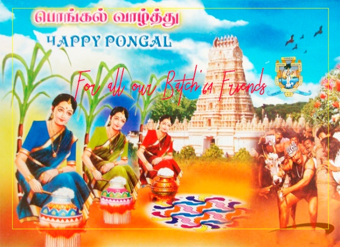 thai pongal greetings copy